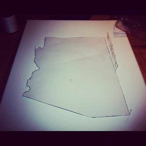 Outline the state with pins. #Pinterest #Fail