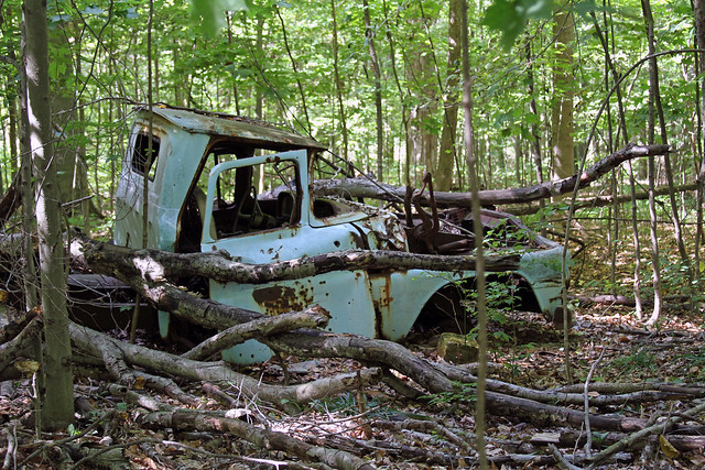 Abandoned truck in the woods