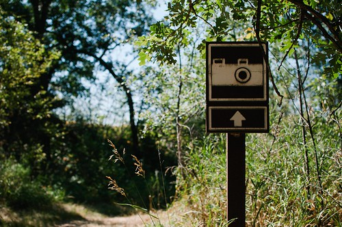 Cameras This Way!
