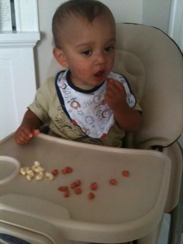 toddler eating finger foods