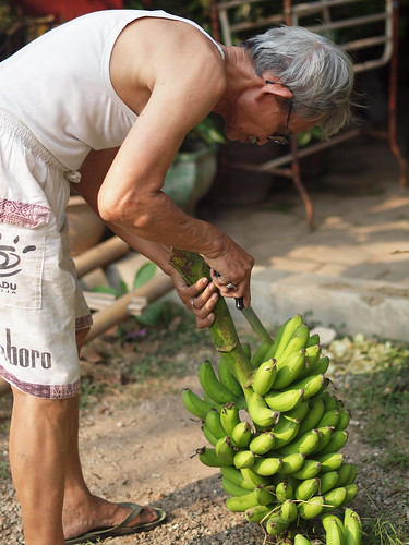 216/366 - Cutting bananas by Flubie