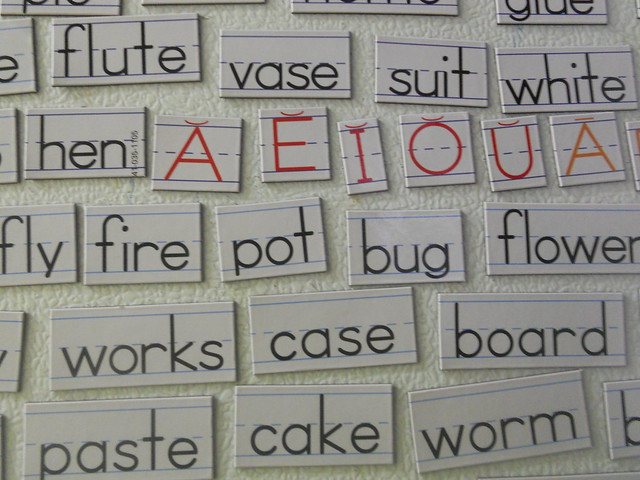 Word and Vowel magnets