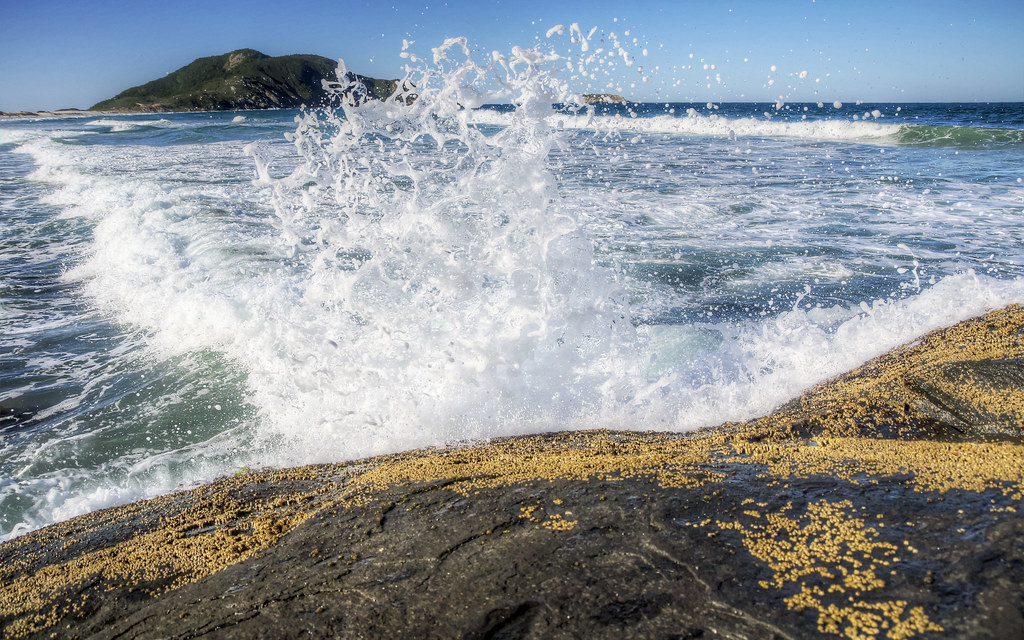 Surf: Brazil