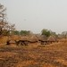 Northern Ghana impressions - IMG_1273_CR2_v1