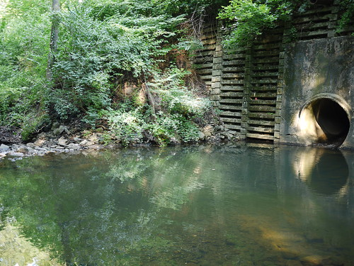 drain pool