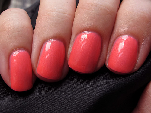 pink-plumeria