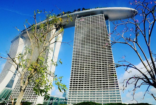 Marina Bay Sands from Gardens by the bay, Singapore