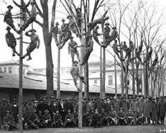 World War I -- SATC (Students' Army Training Corps) pole-climbing training for telephone linemen, 1918.