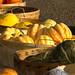 Harvest 2012 102