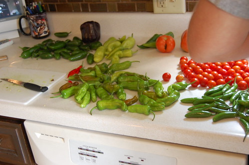 peppers and tomatoes on the counter in front of a tv with Mike's elbow in the right corner