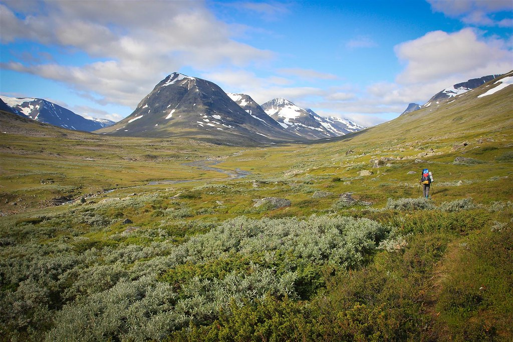 Algavagge, Sarek NP, Laponia, Sweden