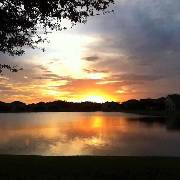 Long walk. Beautiful evening. #nofilter