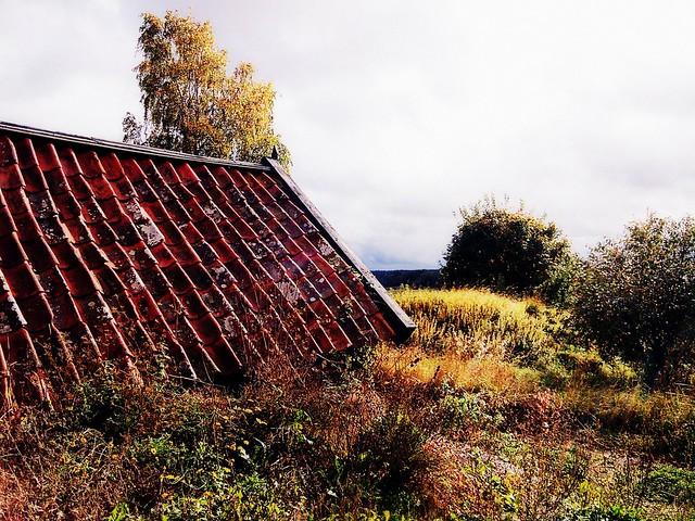Viking Land Fairy Tale - 1