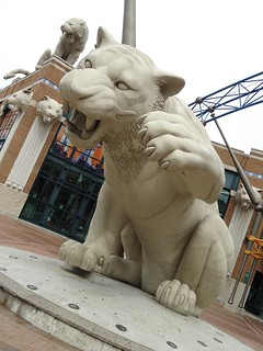 tiger 069