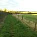 Bridalway to Letcombe