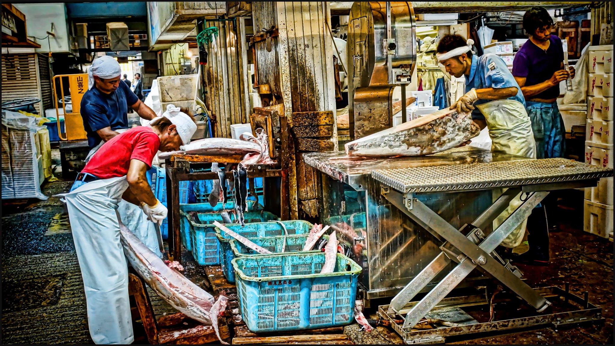 Tsukiji fish market Japan