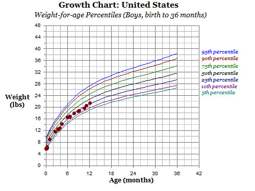growth chart 12 months -weight