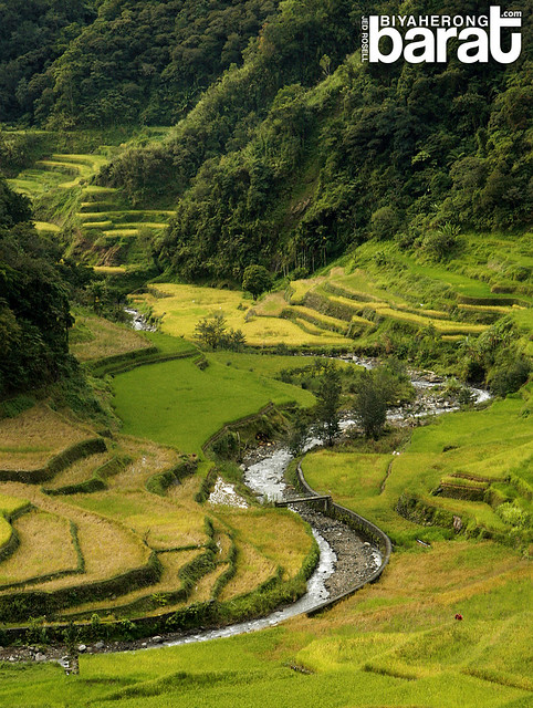 Guihob natural pool and rice terraces in banaue ifugao