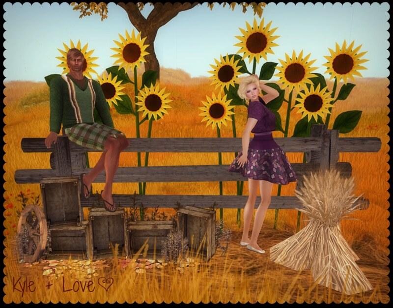 harvest1_Final