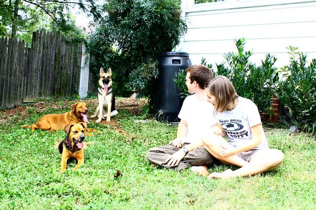 Jagodas and pups