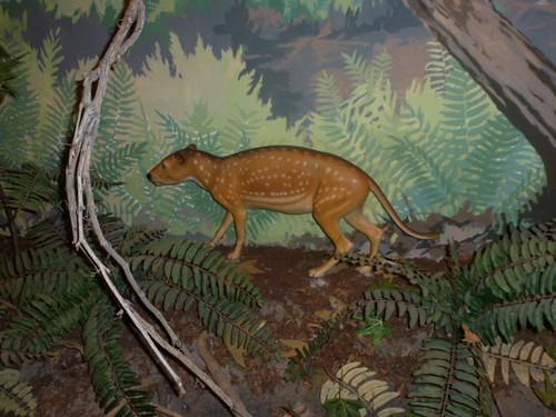 9-3-12 UT - Dinosaur National Monument 11