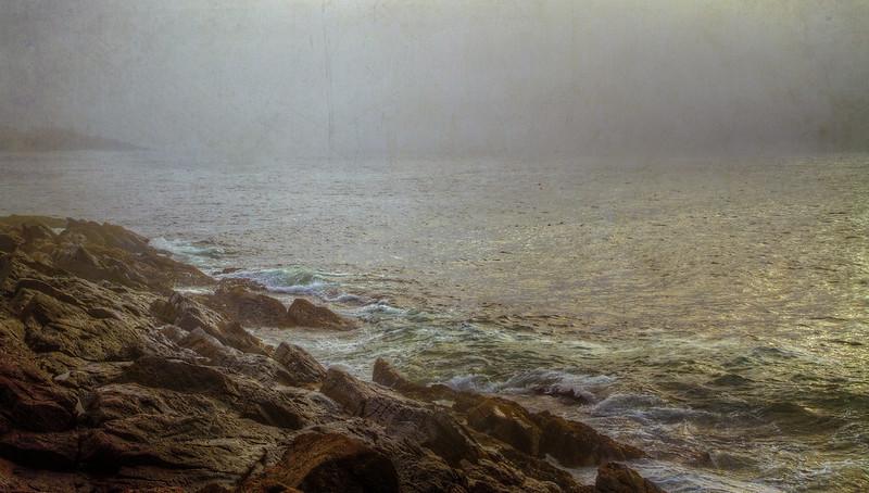 Foggy Coast plus.jpg