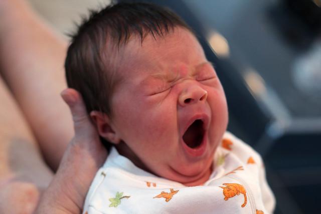 Harper yawning