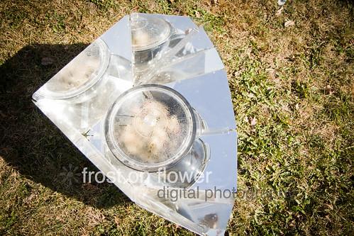20120929-harvestfest-26.jpg