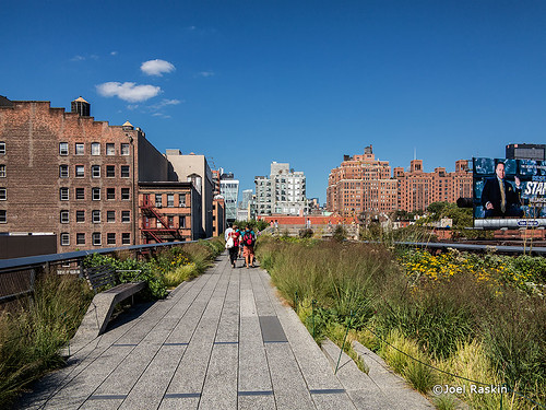 The High Line - 1 by Joel Raskin
