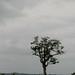 Democratic Republic of Congo impressions - IMG_2783_CR2_v1