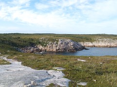 Duncans Cove