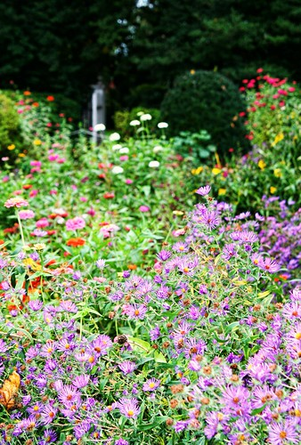 Gardens of Mount Vernon. Photo copyright Jen Baker/Liberty Images; all rights reserved. Pinning to this page is okay.