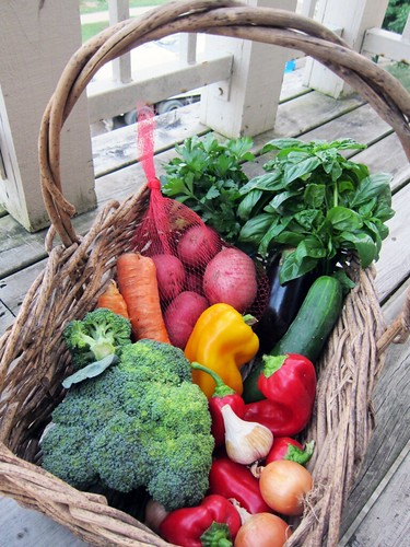 A basket full of produce - broccoli, peppers, eggplant, various herbs, carrots, onions, and more.