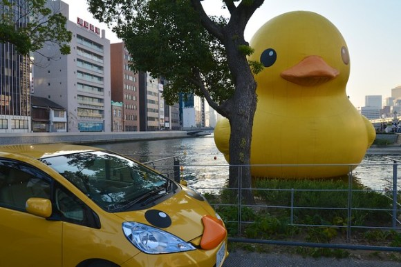 121021_duck04