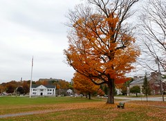 Framingham town common