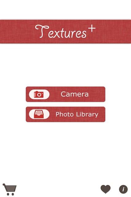 Camera Roll-4911