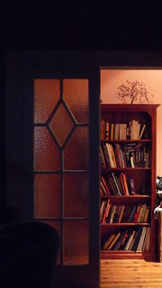 A bookshelf seen through a partially open doorway.