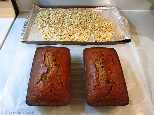 Day 304 Toasted Pumpkin Seeds & Pumpkin Bread by pixygiggles