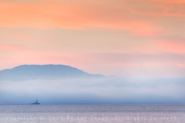 Foggy Puget Sound, 2013