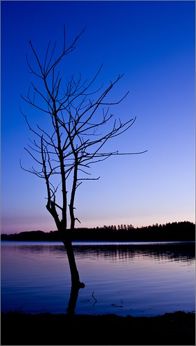 Morgens am Blausteinsee