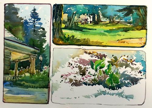 st_2012, rose shenshon garden, Santa Clara by Taswiir