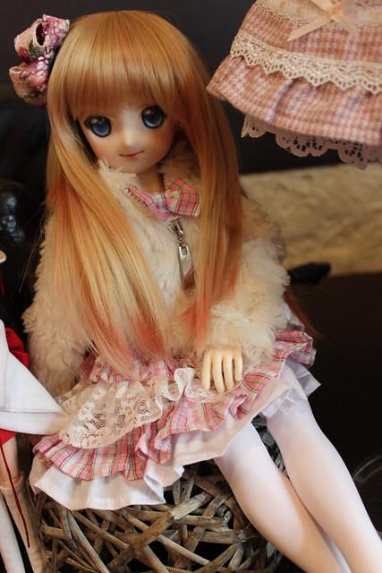 Tanu-chan's Kairi