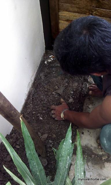 Composting Oct2012 (3)