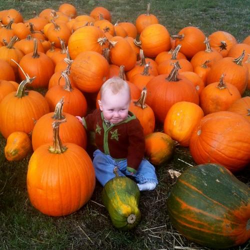 pumpkinpatchuly