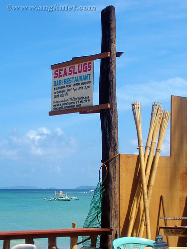 2006 Sea Slugs Sign