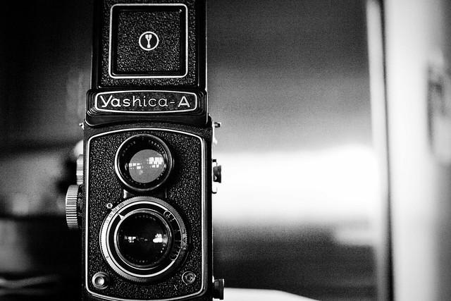 Yashica A 295/366