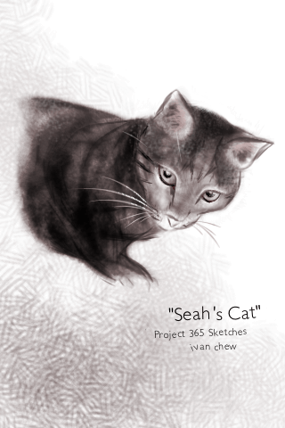 """Seah's Cat"" (#13: Project 365 Sketches)"