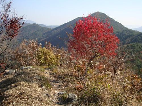 Bukbudong Sanseong