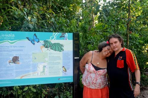 Licuala rainforest8