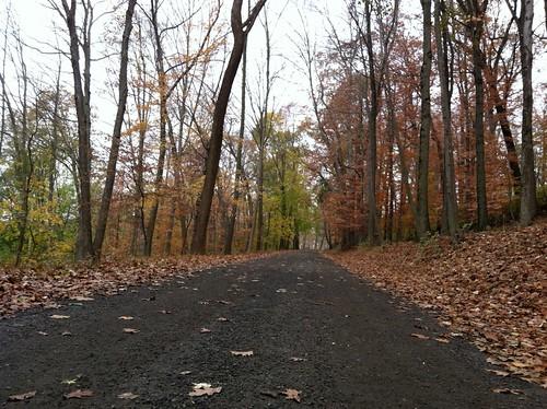 Rockefeller Trail